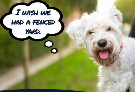 Dog Fence Builder Rowlett TX